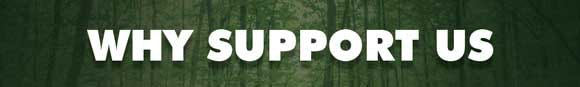 1444302017020810 why supporting us