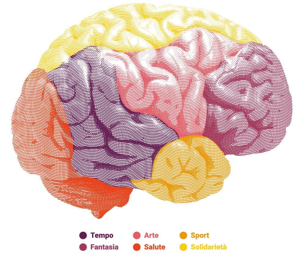1457540923394276 brain