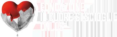 1478511873324005 css orizzontale logo