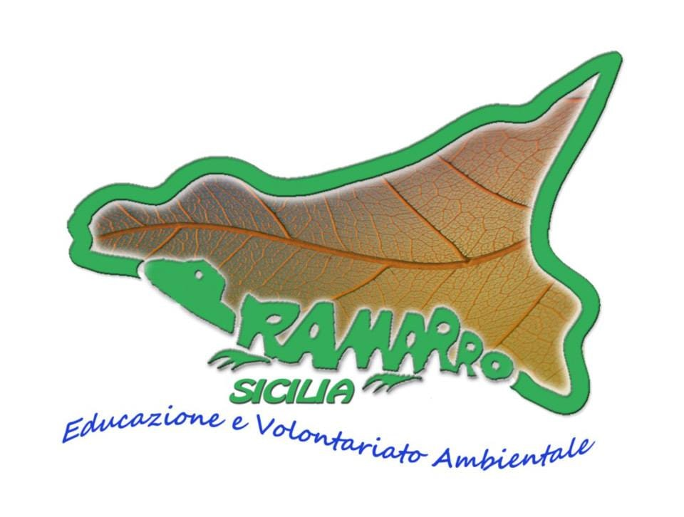 1479060206855916 logo ramarro sicilia