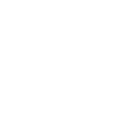 1528961401008223 logo bianco capannori 01 01