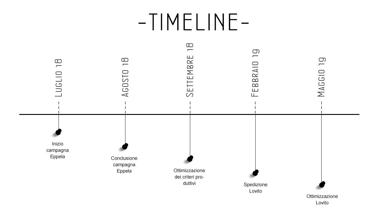 1530288659327914 timeline