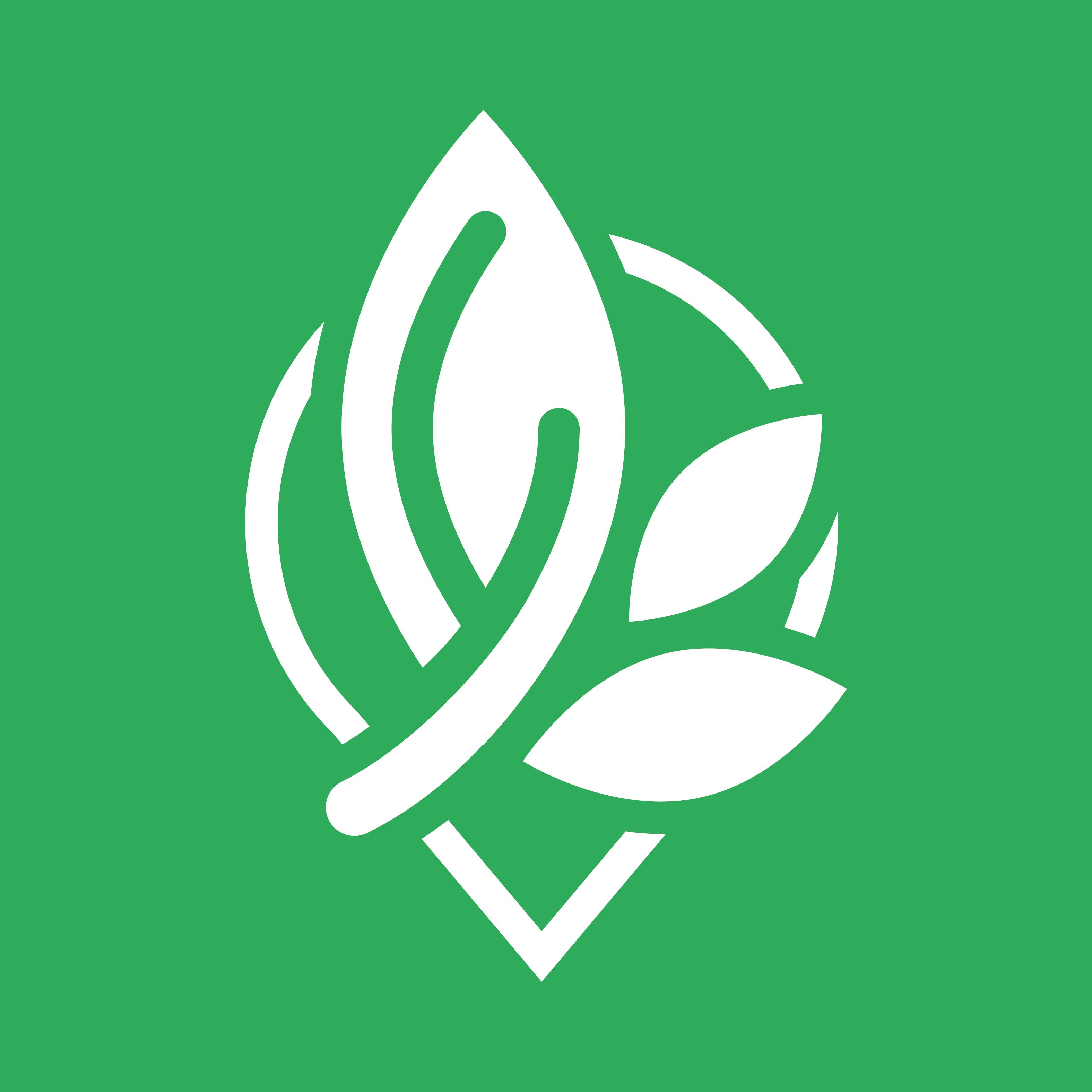 1540168613203948 logo ag v2 800px backgreen