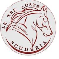 1555012067172280 logo scuderia 1