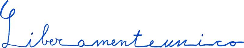 1562582016257632 logo liberamenteunico ok 2