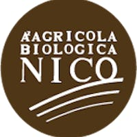 1617878989384014 logo nicobio brown